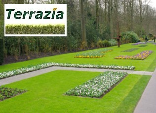 Terrazia artificial grass gives an instant lawn that requires little or no maintenance