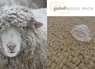 beauty of wool home floor site